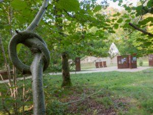 La chapelle Saint Thomas d'Aizier et une branche nouée.